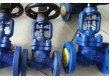 Globe Valve Cast Steel PN 40 Bellow Seal Flange